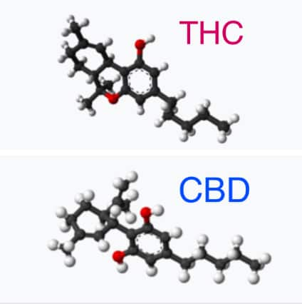 THC and CBD genetic structures.