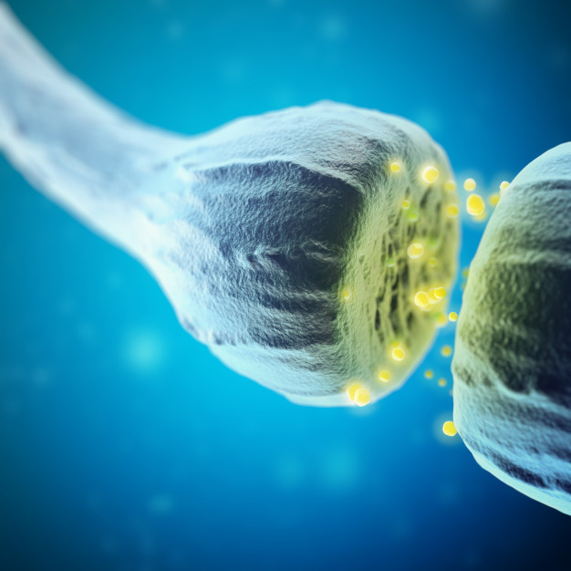 Peptides signal the biological change your cells experience, a reflection of your feelings.