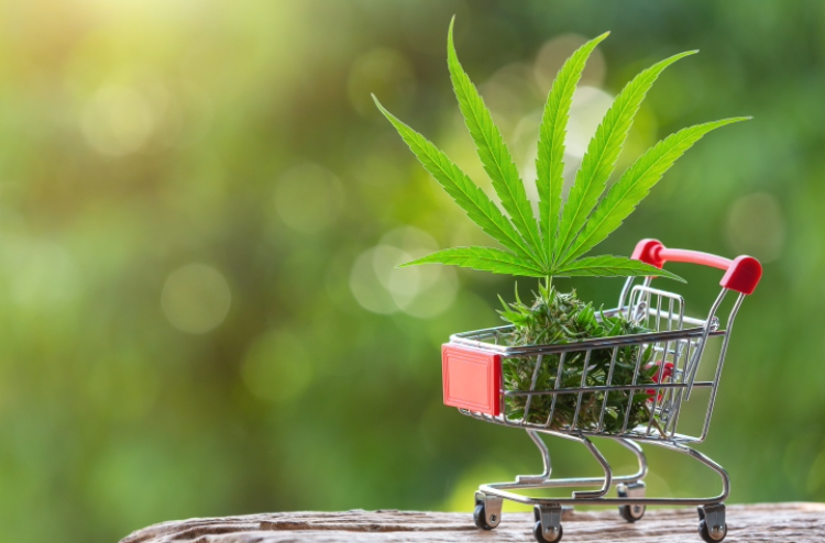Choose a cannabis product that reflects your body's needs.