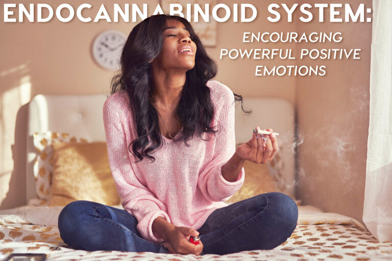 Endocannabinoid System: Encouraging Powerful Positive Emotions