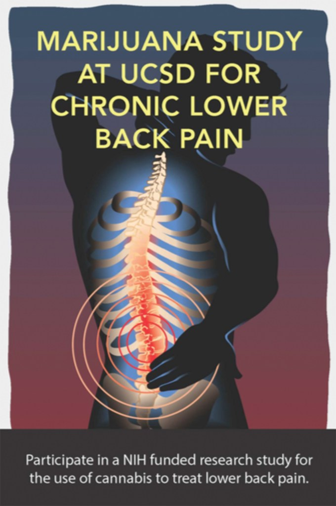chronicback 1