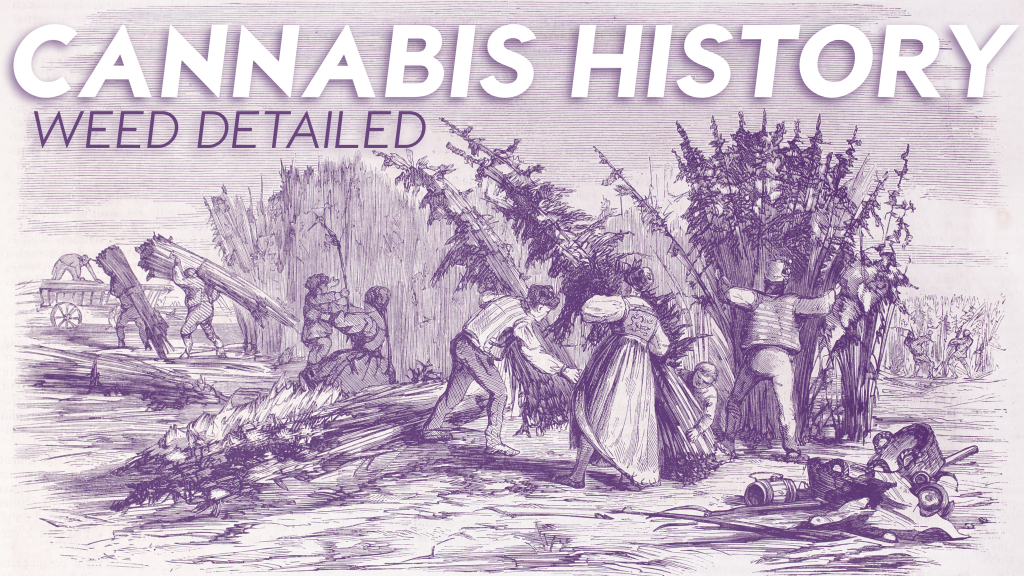 In this post on cannabis history, we're laying out the timeline of the plant & its ever-evolving role in society and culture.