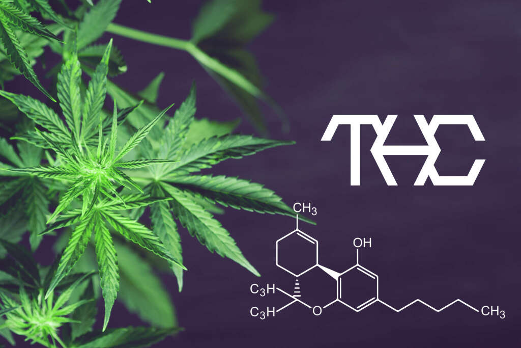 A look at the structure of THC.