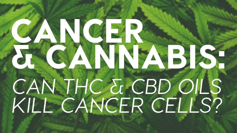 Read more about the article Cancer & Cannabis: Can THC & CBD Oils Kill Cancer Cells?