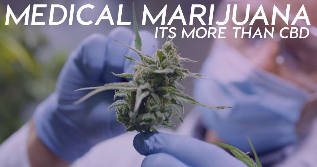 When considering the benefits of medical marijuana, there's so much more to know than CBD.