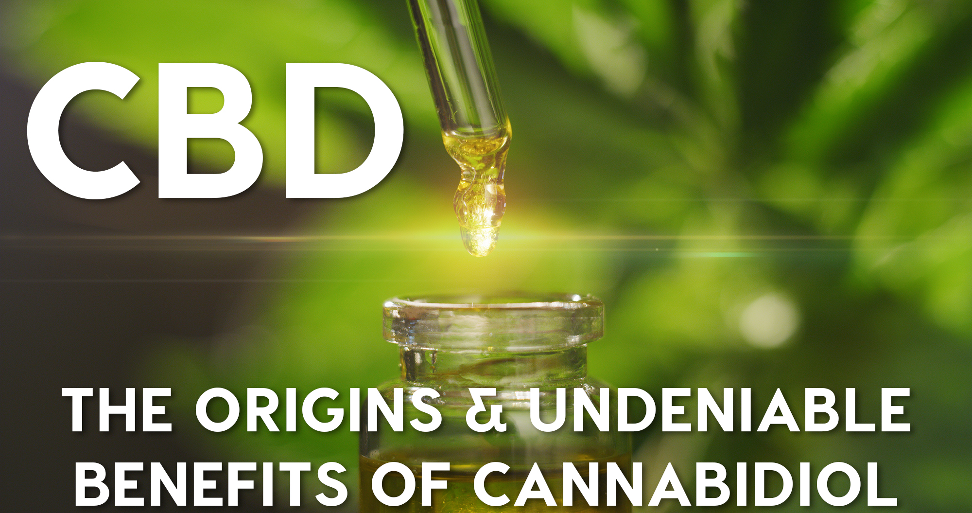 CBD: The Origins & Undeniable Benefits of Cannabidiol