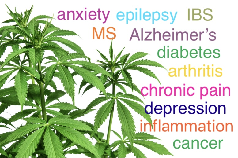 CBD can be beneficial to treating symptoms from a variety of conditions.
