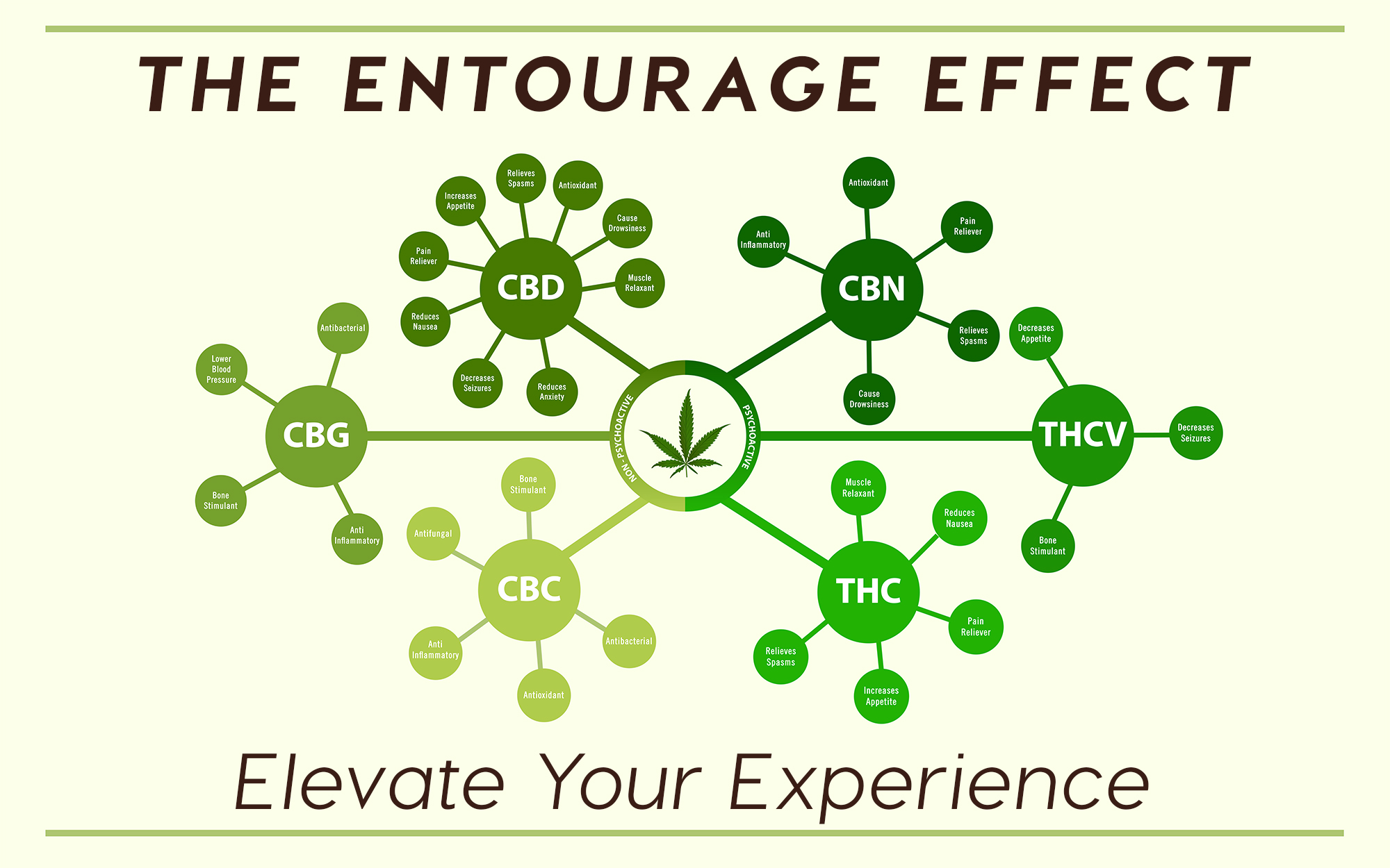 The entourage effect is the result of cannabinoids, terpenes & flavonoids in action.