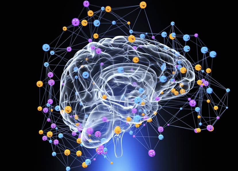 Cannabinoids influence youre emotional balance.