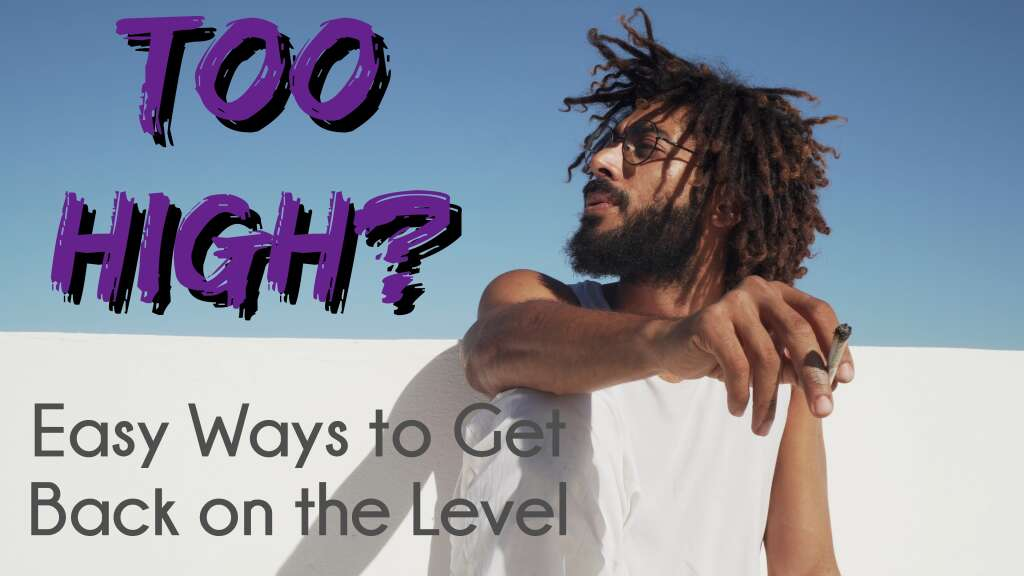 """A man smoking a joint on a roof with the title """"Too High? Easy Ways to Get Back on the Level."""""""