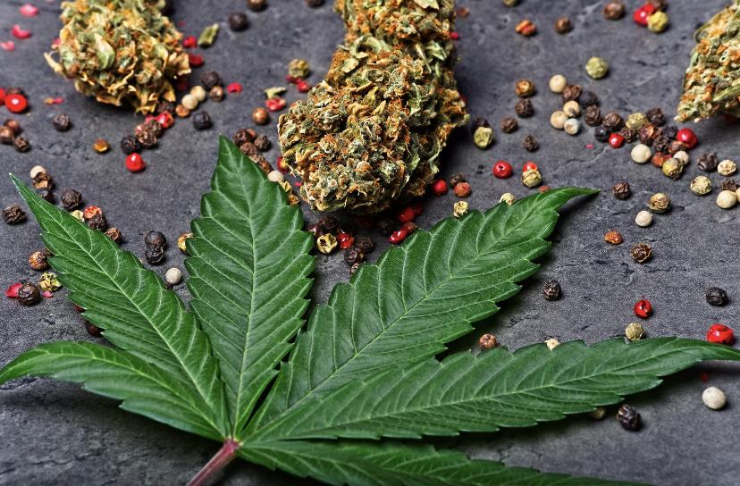 Peppercorns & cannabis flower.